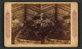 Hot house scene in California, from Robert N. Dennis collection of stereoscopic views 2.png