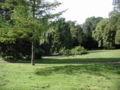 Huerth-Hermuelheim-Burgpark-012.JPG