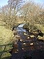 Hunder Beck - geograph.org.uk - 684809.jpg
