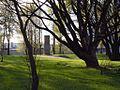 Ilyinsky Garden (Saint Petersburg) May 2016. 002.jpg