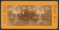 Independence Hall, Philadelphia, from Robert N. Dennis collection of stereoscopic views 5.png