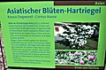 Informationstafel Röhrensee 75.jpg
