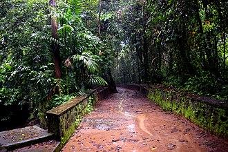 Iringole Kavu - Image: Iringol Kavu Perumbavur Kerala India DSC 5397