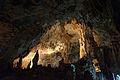 Ishigaki-Cave15s5s4592.jpg
