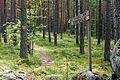 Jääskelä nature trail 12.jpg
