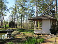 Japanese Garden in Hermann Park, Houston.JPG