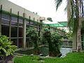 Jardim do Centro de Ciências Matemáticas e Natureza (CCMN) da Universidade Federal do Rio de Janeiro (UFRJ).jpg