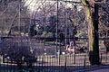 Jardin des Plantes (3190834718).jpg