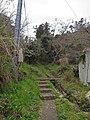 Kami Shima , 神島 神島灯台から観的哨 - panoramio.jpg