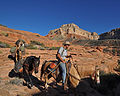 Kanab Creek Wilderness (8101140484).jpg