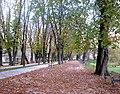 Karlovac šetalište.jpg