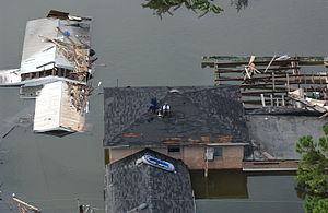 Environmental racism - People on the roofs of their houses avoiding the flood