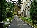 Kisegach san., Chelyabinskaya oblast', Russia, 456441 - panoramio (2).jpg