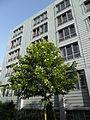 Klinikum Nürnberg Nord Juli 2012 42.JPG