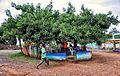Konso Beer Garden, Ethiopia (8086176725).jpg