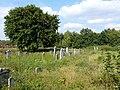Koronowo - cmentarz ludności żydowskiej - panoramio (4).jpg