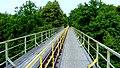 Koronowo - widok mostu kolei wąskotorowej. - panoramio (5).jpg