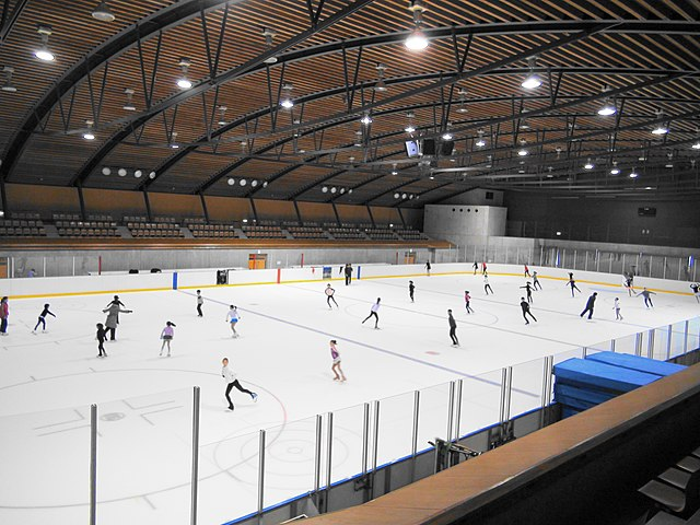 Ice Rink Long Island Ny