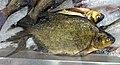 Kuopio market hall - fish.jpg