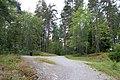 Kyrkberget lindesberg stig gren gamla vattentornet.jpg