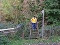 Ladder Stile - geograph.org.uk - 73061.jpg