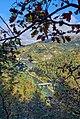 Lago Bruno, ramo sud - panoramio.jpg