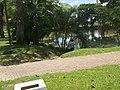 Lago del parque del sur - panoramio.jpg