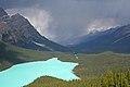 Lake Peyto 4 (228442233).jpg