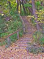 Lakeshore Path to Muir Woods - Madison, WI.jpg