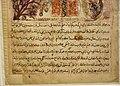 Leaf from a copy of Kalila wa Dimna, Shiraz, 1333, The David Collection, Copenhagen (3) (36272149341).jpg