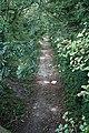 Lee Moor Tramway - geograph.org.uk - 251397.jpg