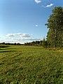 Lenskiy r-n, Arkhangelskaya oblast', Russia - panoramio.jpg