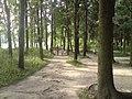 Lieninski District, Mogilev, Belarus - panoramio (389).jpg