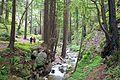 Limekiln State Park.jpg