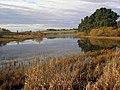 Lindean Reservoir - geograph.org.uk - 1583786.jpg