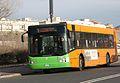 Livorno ATL BredaMenarinibus B5021 01.JPG