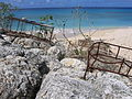 Lobster trap in Barbados 2.jpg