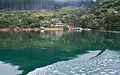 Lochmara Bay, Marlborough, New Zealand, 11 May 2011 - Flickr - PhillipC (1).jpg