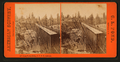 Long Ravine Bridge, C.P.R.R. California, by Pond, C. L. (Charles L.).png
