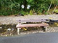 Long shot of the bench (OpenBenches 9256-1).jpg