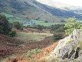 Looking down on Tal-y-mignedd Uchaf - geograph.org.uk - 1510956.jpg