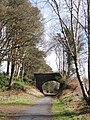 Looking towards the bridge on the dismantled railway - geograph.org.uk - 541873.jpg