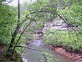 Lusk-Creek-Canyon.jpg