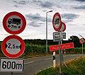 Luxembourg. Schëlterbësch zu Bouneweg.jpg