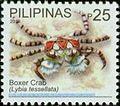 Lybia tesselata 2010 stamp of the Philippines.jpg