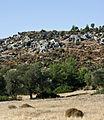 Lycian tombs Xanthos IMGP8896.jpg