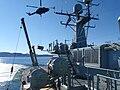 Lynx sling 02.jpg