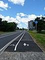 Mäepealse cycle lane.JPG
