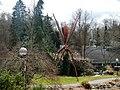 Mücke - panoramio.jpg