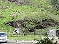 Madeira em Abril de 2011 IMG 1579 (5661944424).jpg